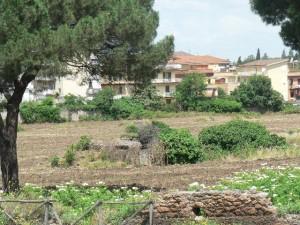 Foto del 2008, resti del ninfeo fatto costruire dalla famiglia Borghese.