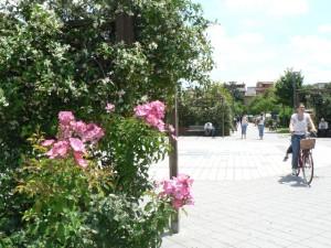Foto del 2008, un'angolo dei giardini pubblici.