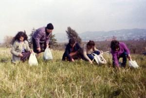 Foto del 1980, parte di quest'area oggi è occupata dall'Università di Tor Vergata.