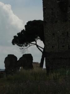 Foto del 2008, vista del Tempietto e le due Torri, in via dei Ruderi di Torrenova.